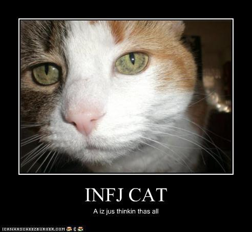 thinking1 Information about the INFJ personality type